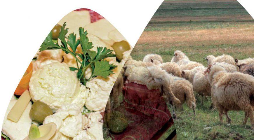 aranzmani-obilazak-seoskih